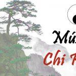 Musica chi kung